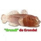 Think Big Grundi de Grondel 10 cm